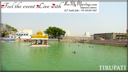 tirupati ive marriagestreaming
